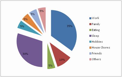 Time Management Pie Chart Unique Effective Time Management Charts Perspective