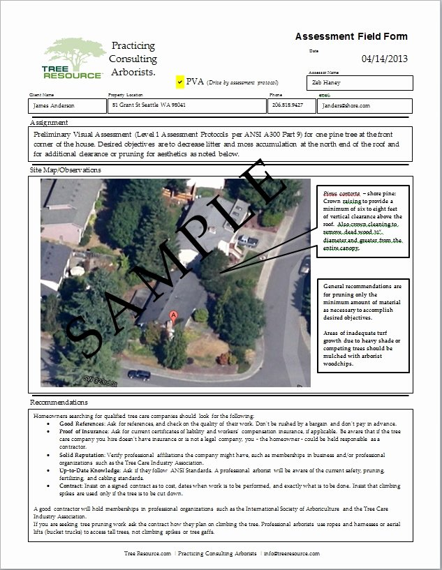 Tree Service Estimate Template Beautiful Tree Removal Quote Template Image Quotes at Relatably