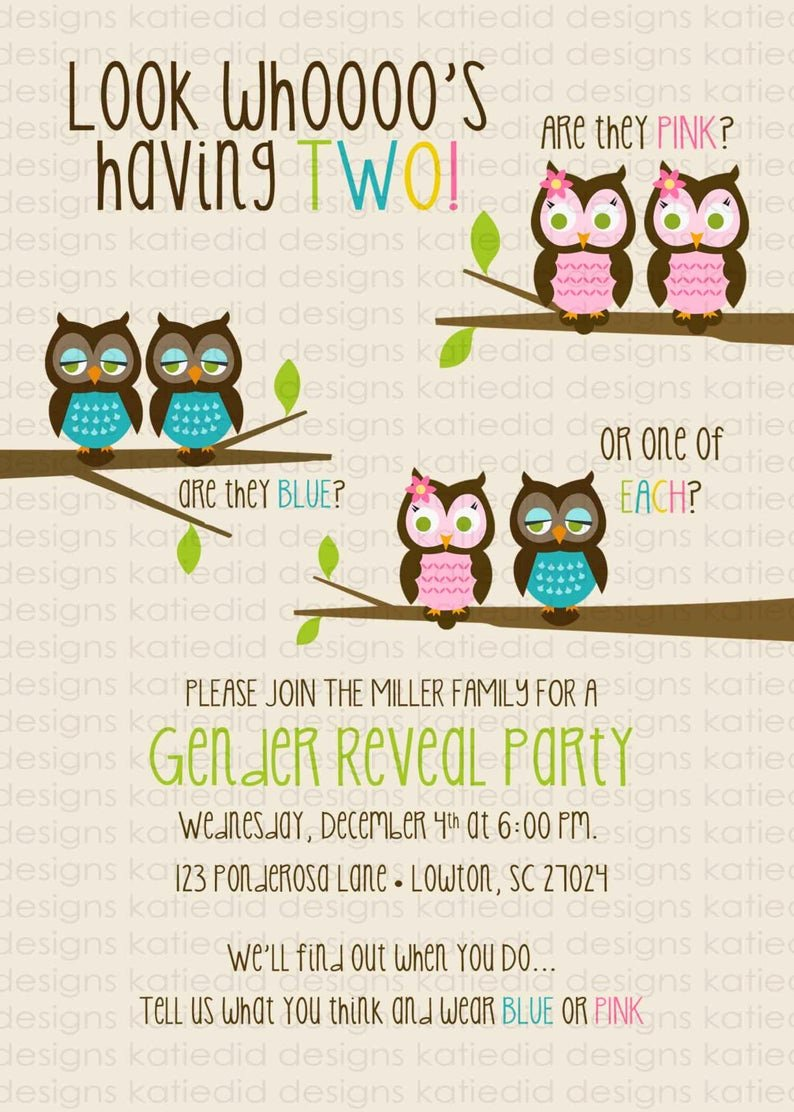 Twin Gender Reveal Invitations Beautiful Twin Gender Reveal Invitation He or She Gender Reveal