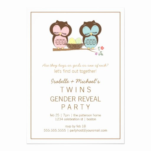 "Twin Gender Reveal Invitations Lovely Cute Owls Twin Baby Gender Reveal Party Invitation 5"" X 7"" Invitation Card"