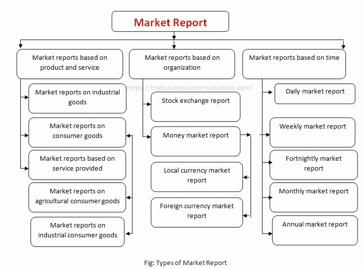 Types Of Business Reports Best Of Types Of Market Report