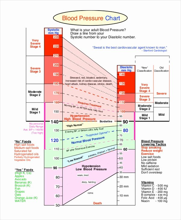 Vaughn Blood Pressure Chart New Blood Pressure Chart Template 4 Free Word Pdf Document