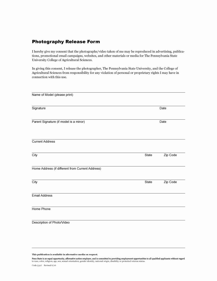 Video Consent form Template Beautiful 53 Free Release form Templates [word Pdf]