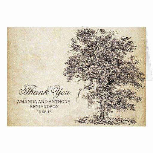 Vintage Thank You Cards Elegant Old Oak Tree Vintage Thank You Cards