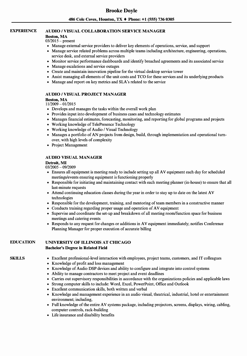 Visual Merchandising Resume Samples Beautiful Audio Visual Manager Resume Samples