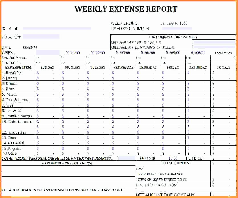 Weekly Cash Flow Template Excel Inspirational 10 11 Cash Flow Statement Template Uk