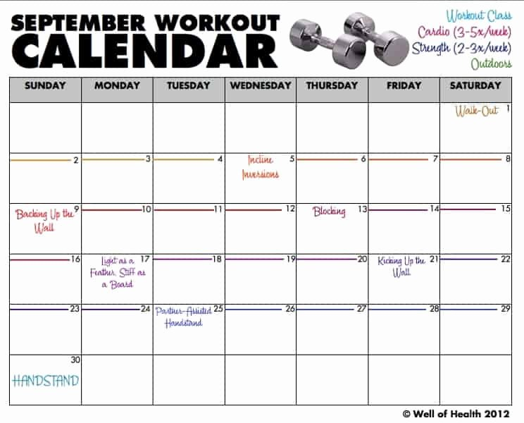 Workout Schedule Template Excel Inspirational 9 Excel Workout Templates Excel Templates