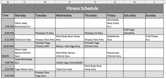 Workout Schedule Template Excel Lovely Fitness Schedule Template Ficial Templates